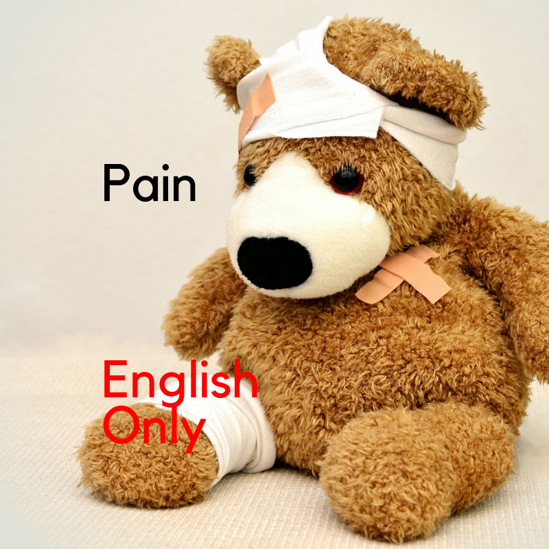 Recorded Webinar - Ouch! The Basics of Pain (EN)