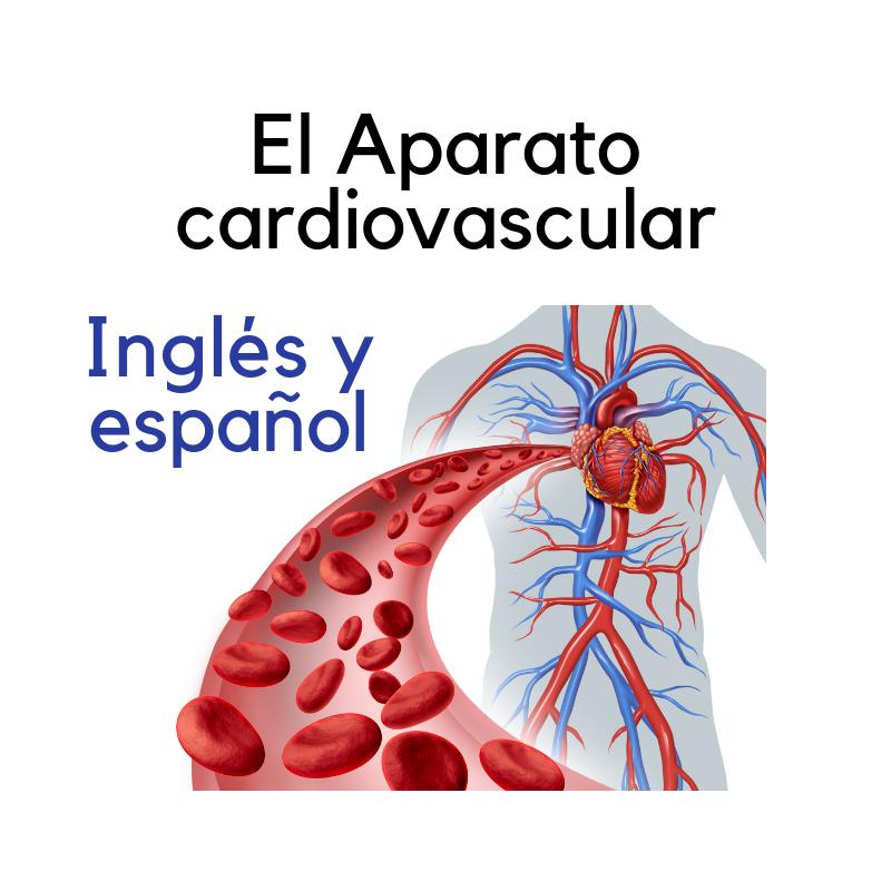 Recorded Webinar - Get to know - El aparato cardiovascular (EN/ES)