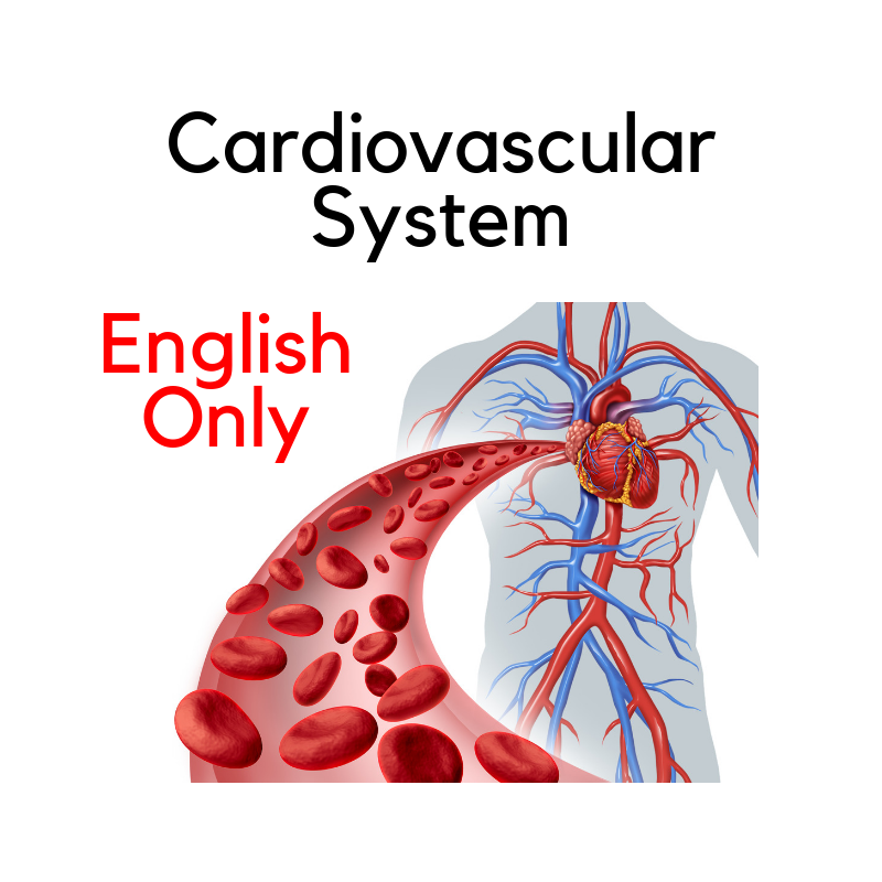 Recorded Webinar - Get to know - Cardiovascular System (EN)