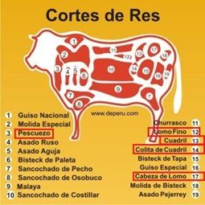 Cortes de res (Cuts of beef)